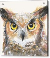 Great Horned Owl Watercolor Acrylic Print