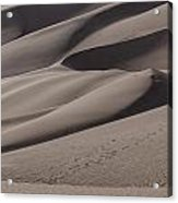 Great Sands Shapes Acrylic Print