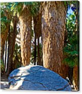 Great Sliding Rock In Lower Palm Canyon In Indian Canyons Near Palm Springs-california Acrylic Print
