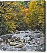 Great Smoky Mountains Creek 4 Acrylic Print