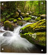 Great Smoky Mountains Gatlinburg Tn Roaring Fork - Gift Of Life Acrylic Print by Dave Allen