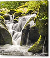Great Smoky Mountains Tn Roaring Fork Motor Nature Trail Waterfall Acrylic Print