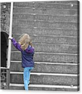 Great Steps Acrylic Print