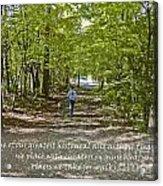 Great Treasures Acrylic Print by Sandra Clark