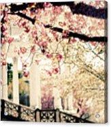 Grecian Spring Acrylic Print