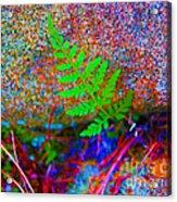Green - Against The Grain Acrylic Print