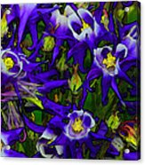 Green And Purple Burst Abstract Acrylic Print by James Hammen