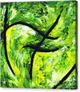 Green Apple Acrylic Print by Kamil Swiatek