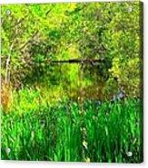 Green As Emerald's Acrylic Print