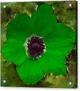 Green Calanit Magen Acrylic Print