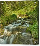Green Colors And A Stream Hdr Acrylic Print