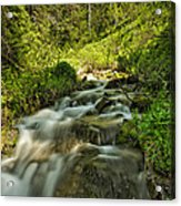 Green Colors And A Stream Acrylic Print
