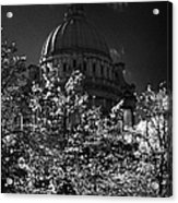 Green Copper Dome Of Belfast City Hall With Blue Cloudy Sky Behind Trees With Autumn Leaves Vertical Acrylic Print