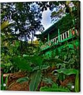 Green Costa Rica Paradise Acrylic Print by Andres Leon