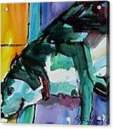 Green Dog Acrylic Print