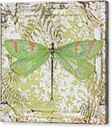 Green Dragonfly On Vintage Tin Acrylic Print