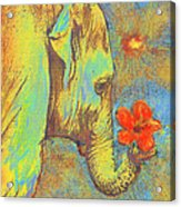 Green Elephant Acrylic Print