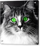 Green Eyed Elvis Acrylic Print