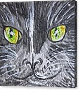 Green Eyes Black Cat Acrylic Print