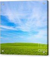 Green Field Landscape Acrylic Print