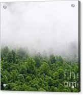 Green Forest With Clouds Acrylic Print