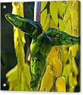 Green Glass Leaves Acrylic Print