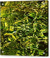 Green Gold Water Abstract. Feng Shui Acrylic Print by Jenny Rainbow