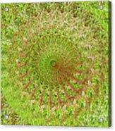 Green Grass Swirled Acrylic Print