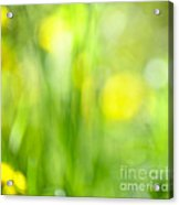 Green Grass With Yellow Flowers Abstract Acrylic Print