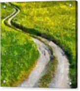 Green Green Grass Of Home Acrylic Print