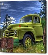 Green International Acrylic Print