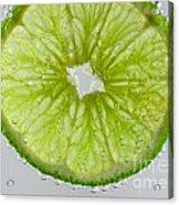 Green Lime In Tonic Water Acrylic Print