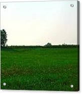 Green Meadow Acrylic Print