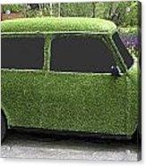 Green Mini Acrylic Print
