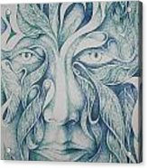 Green Acrylic Print by Moshfegh Rakhsha