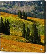 Green Mountain Trail Acrylic Print by Raymond Salani III