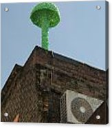 Green Mushroom By Nagel Acrylic Print