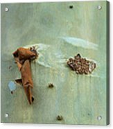 Green Outer Bark Acrylic Print