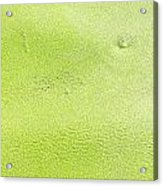 Green Acrylic Print