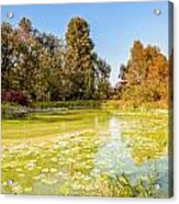 Green Pond And Tree Acrylic Print