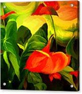 Green Red Acrylic Print
