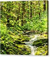 Green River No2 Acrylic Print
