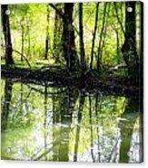 Green Shadows Acrylic Print