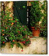Green Shuttered Window Acrylic Print by Lainie Wrightson