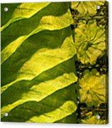 Green Silk 02 Acrylic Print