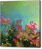 Green Sky With Pink Bougainvillea - Square Acrylic Print