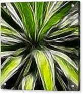 Green Tidings Of Joy Acrylic Print