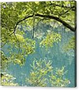 Green Trees Over Blue Water Acrylic Print