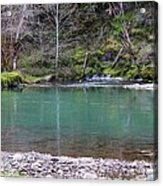 Green Waters  Acrylic Print by Tim Rice