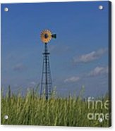 Green Wheat  Field With Green And Yellow Windmill Acrylic Print by Robert D  Brozek